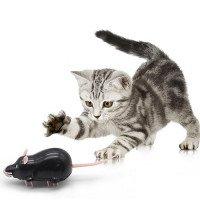 Мишка бігає - іграшка для котів