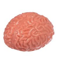 Іграшка-антистрес Мізки
